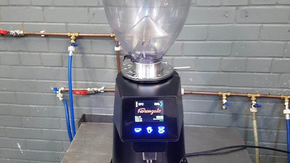 Fiorenzato F64 Evo Coffee Bean Grinder
