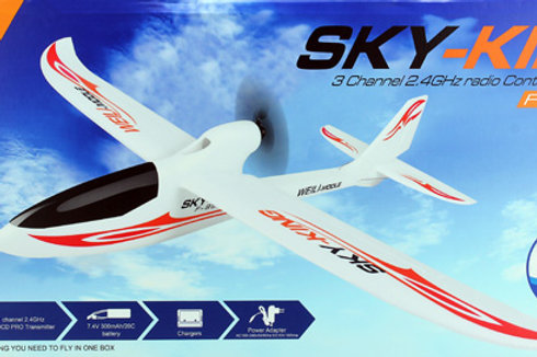 Wltoys F959 Sky