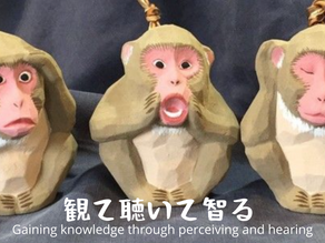 Gaining knowledge through perceiving and hearing