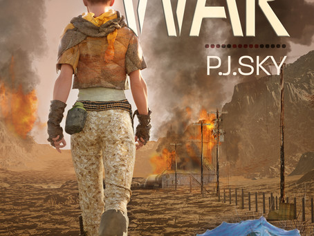 Book Review - Ari Goes To War