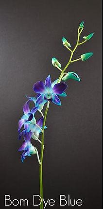 fc-bom-dye-blue.jpg