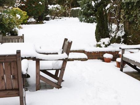 Wat te doen met je tuin bij sneeuw en vorst?