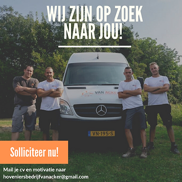 team foto vacature.png