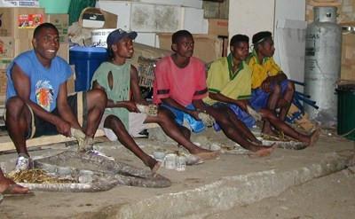 Preparing the Kava in Vanuatu
