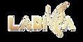 logo_ladiva.png