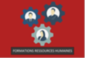 Formations ressources humaines   Actualisation