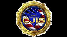 CJIS1-300x167.png
