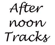 afternoon tracks.jpg