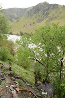 View downstream of Salmon River