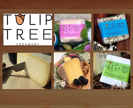Tulip Tree Box 5555.jpg
