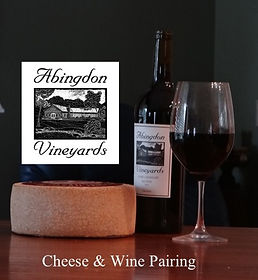 abingdon vineyards_edited.jpg