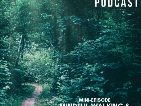 Mini Episode - Mindful Walking