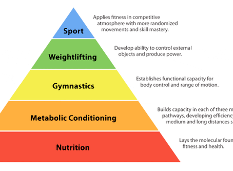 Building a Pyramid of Fitness