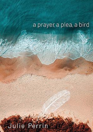 a prayer, a plea, a bird