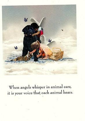 Angels Whisper