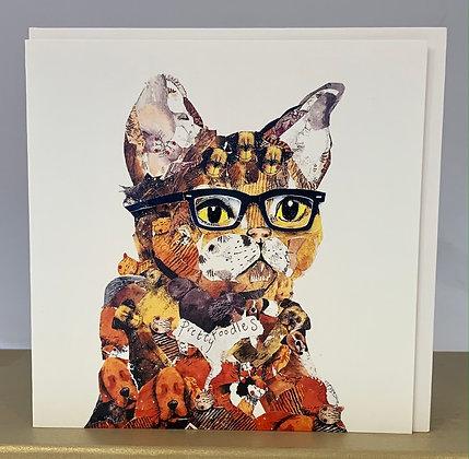 Cat Spectacle