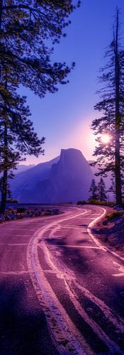 phone wallpaper road.jpg