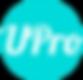 USMLE Pro Tutors Logo