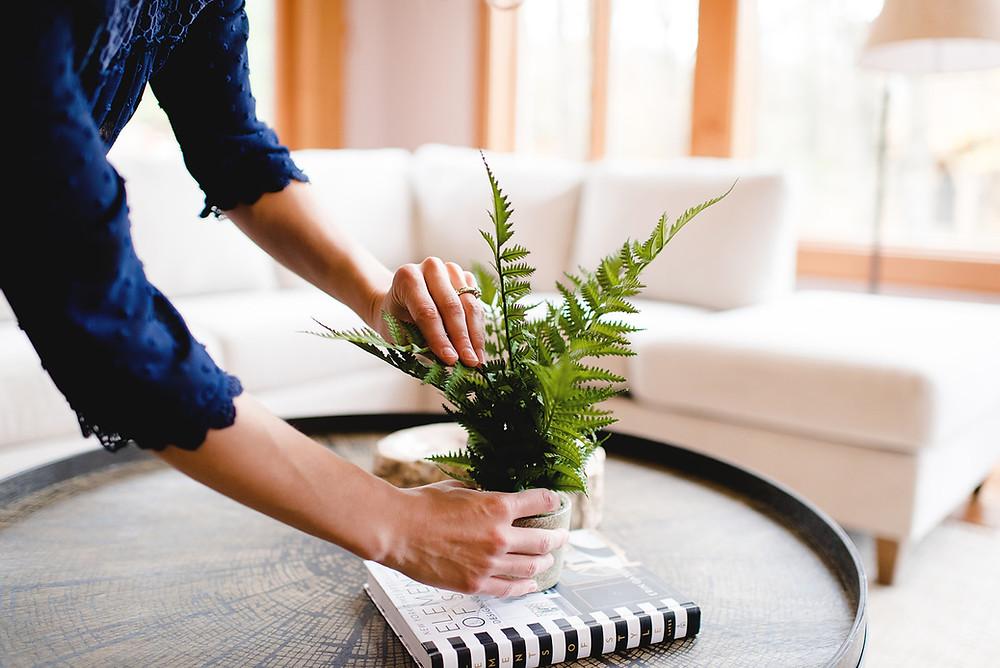 Interior designer Lauren Figueroa arranging a plant.