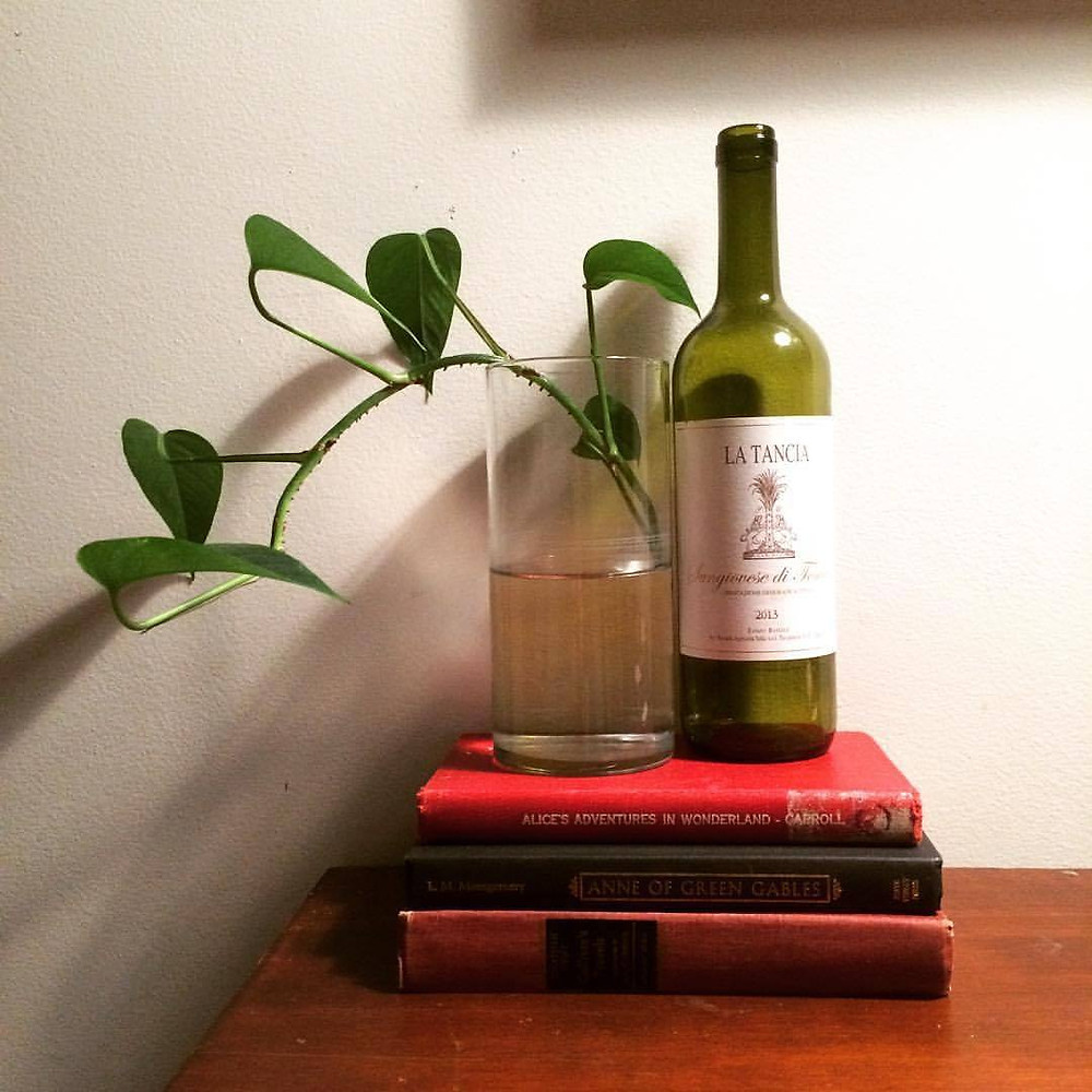 A wine bottle and plant atop a stack of books.