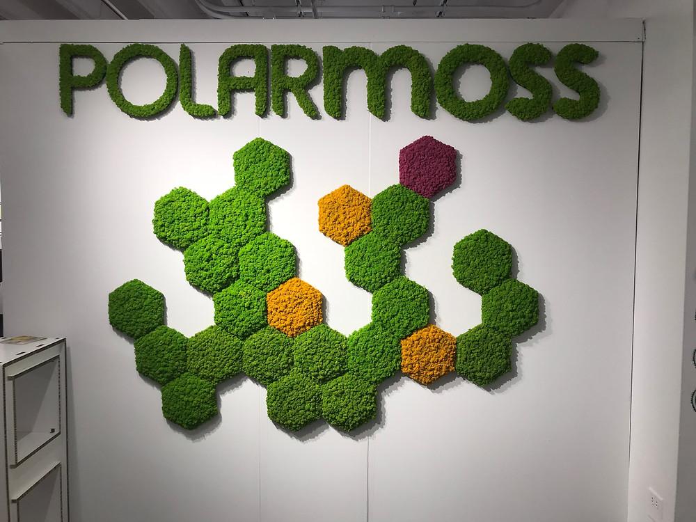 Polarmoss at NeoCon.