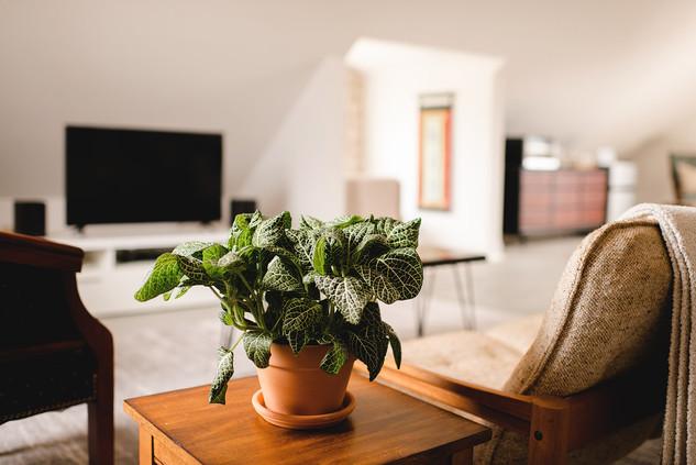 LFD2019_airbnb-024.jpg