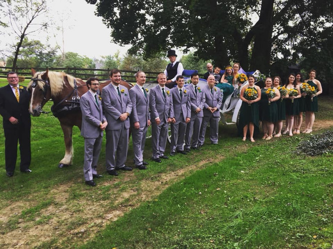 Photoshoot with our horse & carriage