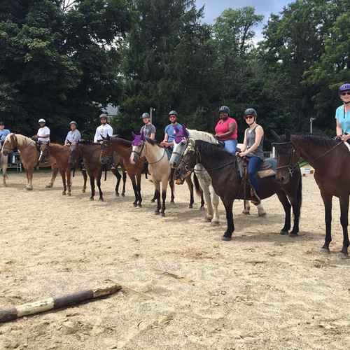 A large group trail ride