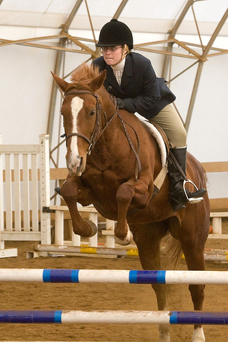Jumping in our indoor ring