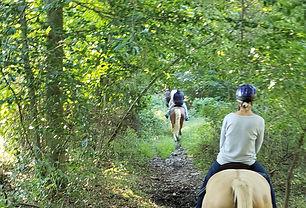 Horeback Riding Trail Ride