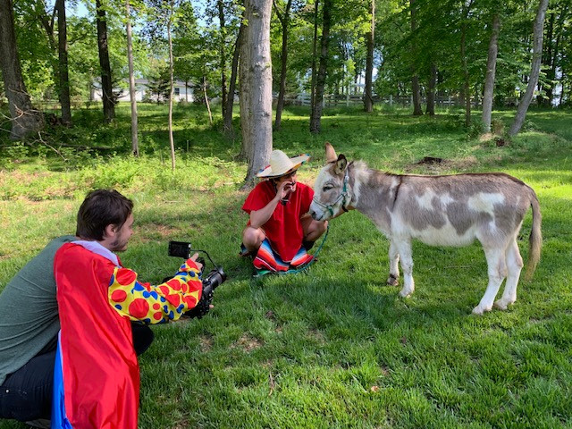 Our Donkey Paco in a music video