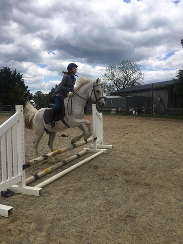 Max Jumping during a cloudy lesson