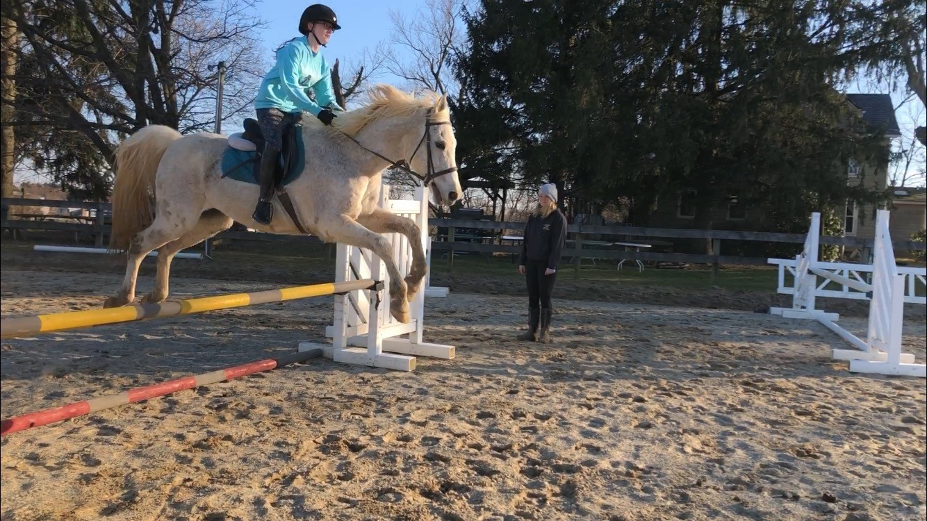 Jumping in a riding lesson with Sydney