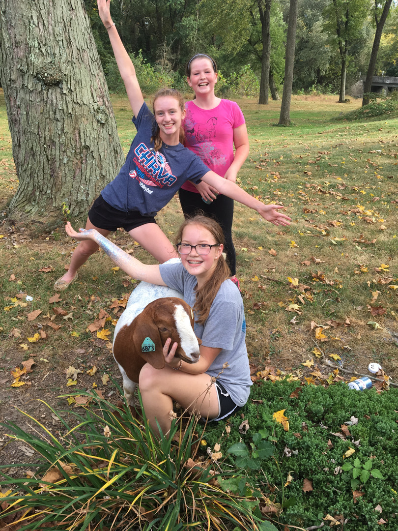 Tailwinds Trotters 4-H