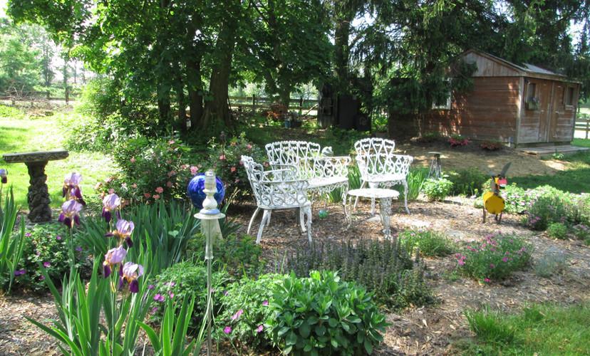 The perennial garden