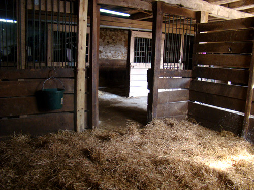 The Bank Barn