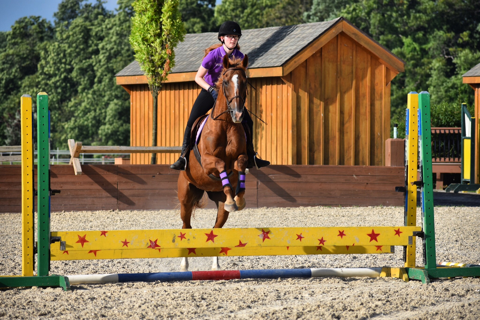 Cinnamon jumping off-farm
