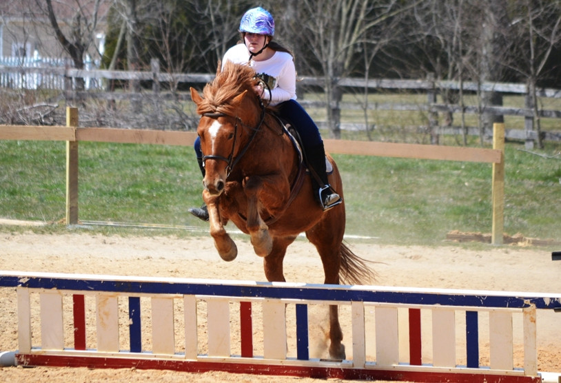 Jumping lesson in our outdoor ring