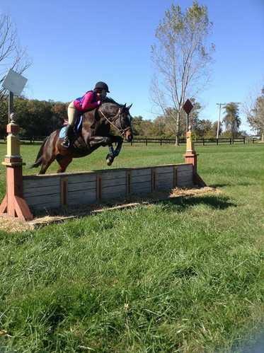 Royce cross country jumping at Olde Hope