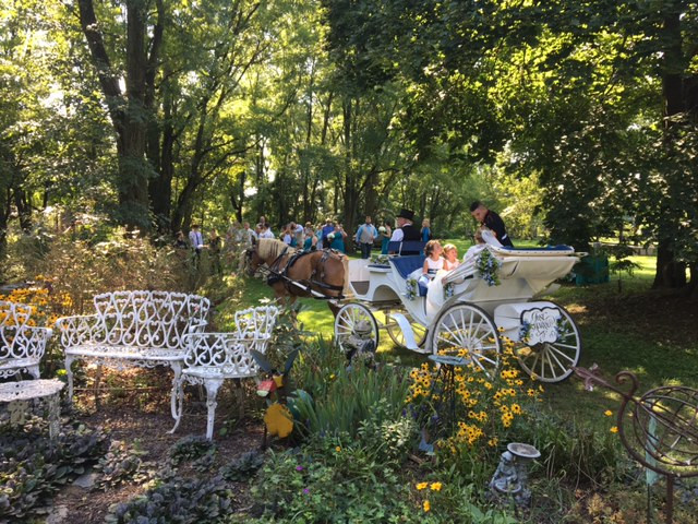 Carriage in the garden
