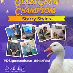 Starry Styles StarFest 2020 GooseChase Champions
