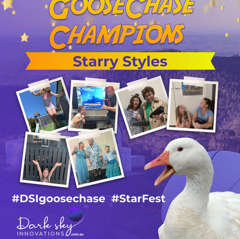 Starry Styles StarFest 2020 GooseChase Champions