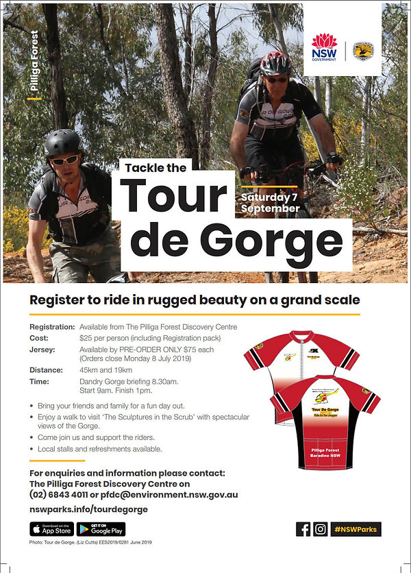 our de gorge poster pdf.jpg
