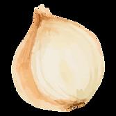 Half White Onion