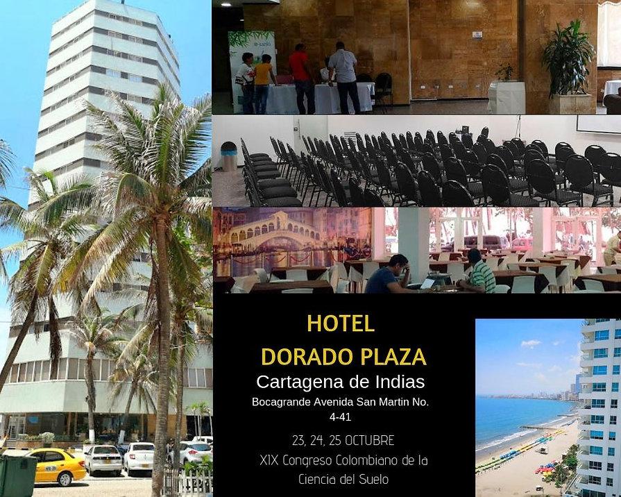 HOTEL DORADO PLAZA (2) (1).jpg