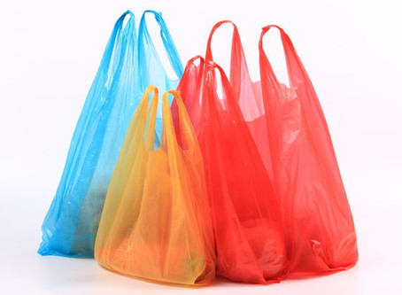 Plastic Bags: Make a Difference One Shopping Trip at a Time