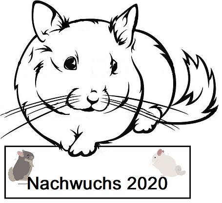 Nachwuchs 2020.png