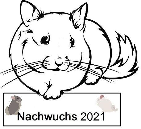 Nachwuchs 2021.jpg