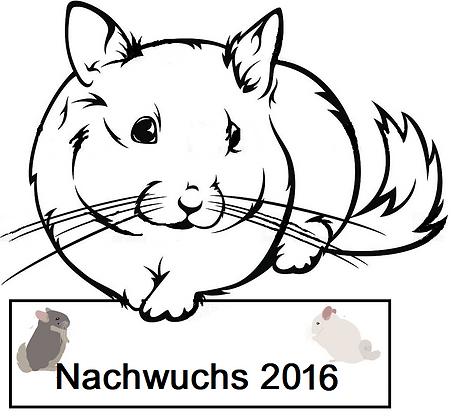 Nachwuchs 2016.png