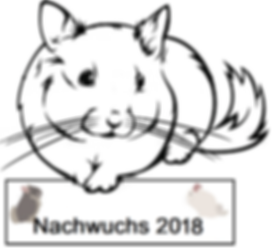 Nachwuchs 2018.png